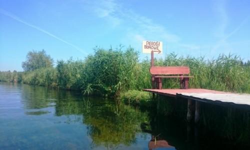 Zdjecie POLSKA / Pojezierze Mazurskie / rz. Krutynia / Krutynia oferuje różne atrakcje