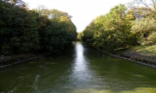 Zdjęcie POLSKA / opolskie / Turawa / Rzeka Mała Panew, za tamą
