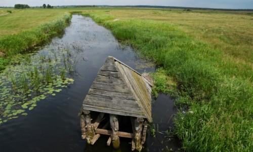 Zdjecie POLSKA / Biebrzański Park Narodowy / Okolice Jagłowa / Widok na Biebrzę w okolicach Jagłowa