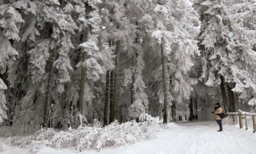 Zdjecie POLSKA / malopolska / Gubałówka / Zima tu już jest