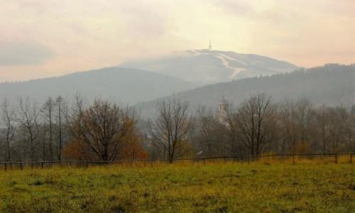 Zdjęcie POLSKA / Beskid Śląski / Meszna / Jesienny spacer - widok na Skrzyczne