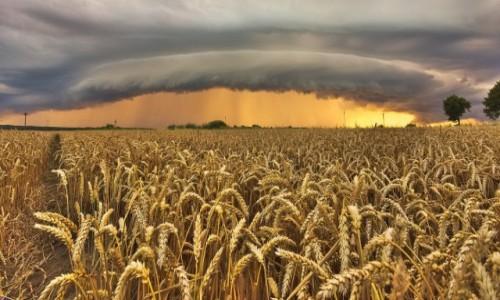 Zdjęcie POLSKA / warmia  / BRANIEWO  /  letnie burze na  Warmii