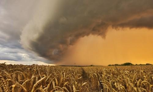 POLSKA / warmia  / BRANIEWO  / burza  na Warmii