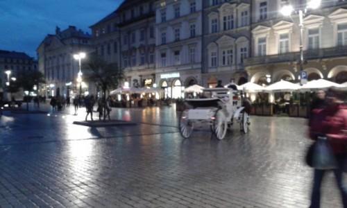 Zdjęcie POLSKA / Małopolska / Rynek w Krakowie / Kraków nocą jeszcze raz