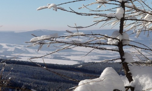 Zdjęcie POLSKA / dolnoślaskie / Międzygórze / Widok na góry w Czechach