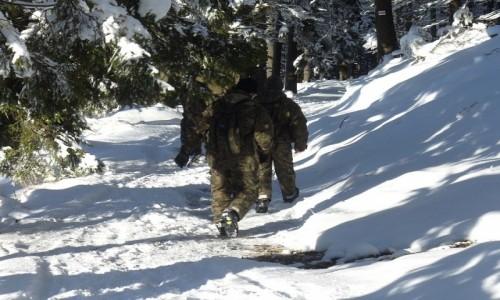 Zdjęcie POLSKA / dolnoślaskie / Międzygórze / Obrona granic, na szlaku ze Śnieżnika
