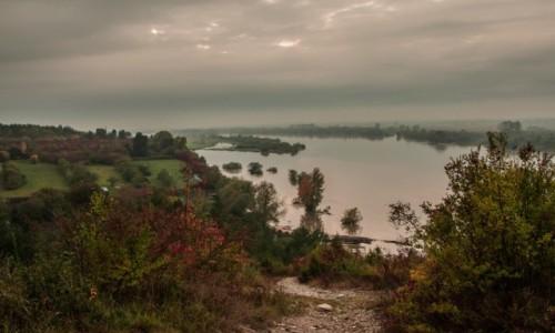 Zdjęcie POLSKA / lubelskie / Mięćmierz / Rezerwat Krowie Wyspy