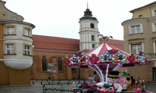 Zdjecie POLSKA / opolskie / Opole / Wesoło w rynku