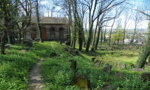 POLSKA / Śląsk Cieszyński / Cieszyn, województwo śląskie  / Fragment starego cmentarza żydowskiego, z ruinami domu przedpogrzebowego,