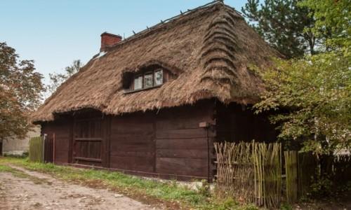 Zdjęcie POLSKA / lubelskie / Mięćmierz / W Mięćmierzu...