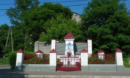 Zdjecie POLSKA / Zagłębie Dąbrowskie / Sosnowiec-Konstantynów, województwo śląskie / Prawdopodobna m