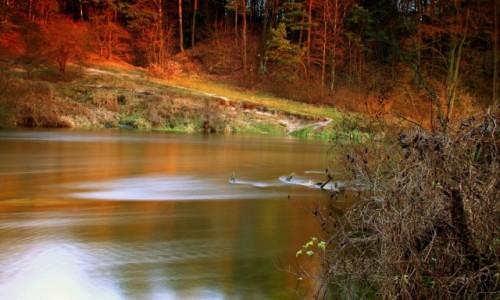 Zdjęcie POLSKA / Bory Tucholskie / Dolina Brdy / Gdy słońce zachodzi