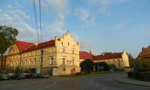 Zdjecie POLSKA / Górny Śląsk / Pilchowice, powiat gliwicki, województwo śląskie / Dzisiejszy szpi