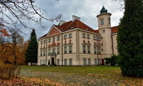POLSKA / mazowsze / Otwock Wielki / Pałac Bielińskich