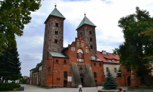 Zdjęcie POLSKA / mazowieckie / Czerwińsk nad Wisłą / Szlak Romański