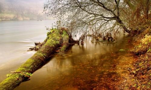 Zdjęcie POLSKA / Bory Tucholskie / Dolina Brdy / W zakolu rzeki