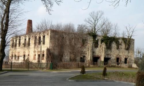 Zdjecie POLSKA / opolskie / Zakrzów / Ruina zamku Templariuszy