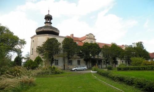 Zdjecie POLSKA / opolskie / Turawa / Pałac
