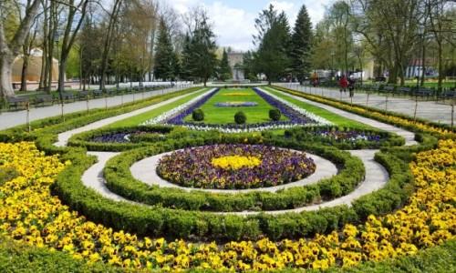 Zdjęcie POLSKA / kujawsko-pomorskie / Inowrocław / Do wiosny już ... nie daleko
