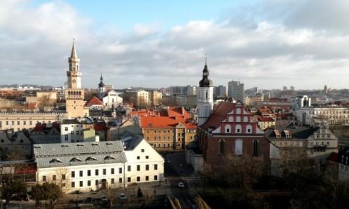 Zdjęcie POLSKA / opolskie / Opole / Widok na miasto, w dali ratusz.