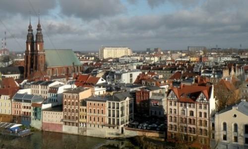 Zdjęcie POLSKA / opolskie / Opole / Katedra Opolska