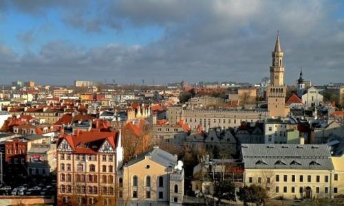 Zdjęcie POLSKA / opolskie / Opole / Jeszcze jeden widok, z Wieży Piastowskiej