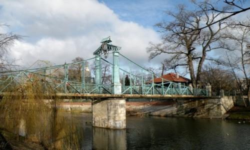 Zdjęcie POLSKA / opolskie / Opole / Most