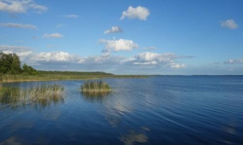 Zdjecie POLSKA / Warmińsko-Mazurskie / Łuknajno / Punkt widokowy Jezioro Śniardwy
