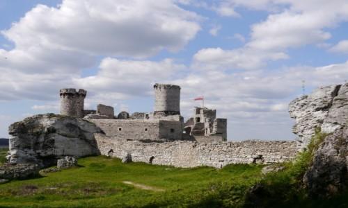 Zdjęcie POLSKA / - / Ogrodzieniec / zamek
