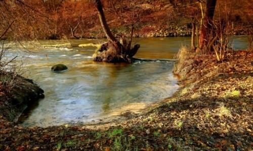 Zdjęcie POLSKA / Bory Tucholskie / Dolina Brdy / Dzisiejszy zachód w Dolinie Brdy