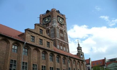 Zdjęcie POLSKA / kujawsko pomorskie / Toruń / W Rynku Staromiejskim