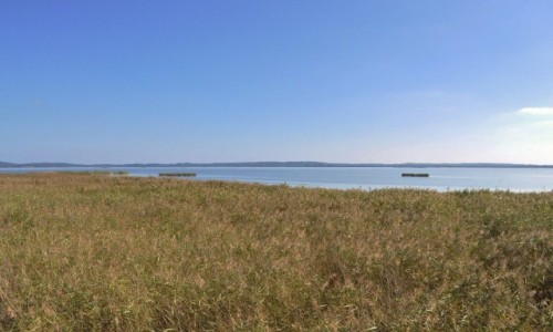 Zdjęcie POLSKA / Pomorskie / Rowy / Rowy, jezioro Gardno