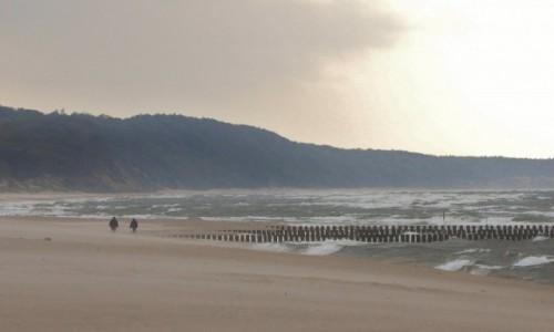 Zdjęcie POLSKA / Pomorskie / Rowy / Rowy, plaża, wędrujący piasek