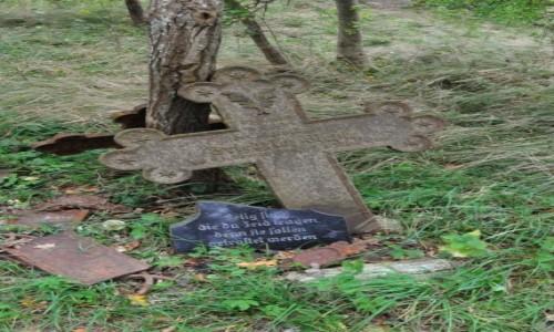 Zdjęcie POLSKA / Pomorskie / Rowy / Rowy, stary, zniszczony cmentarz morski XVIII w.