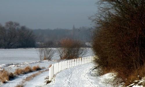 Zdjęcie POLSKA / opolskie / Opole / Scieżka rowerowa zimą