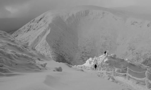Zdjęcie POLSKA / Karkonosze / W drodze na Śnieżkę  / Punkt widokowy