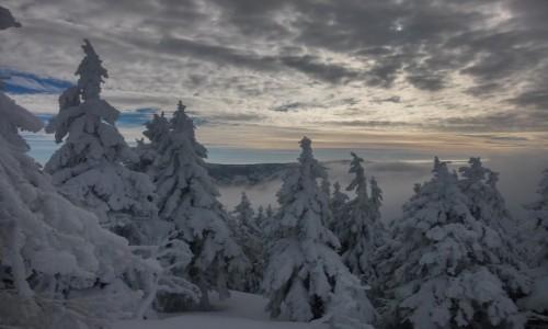 Zdjecie POLSKA / karkonosze / śnieżnik / zimowe klimaty