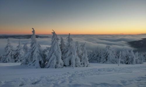 Zdjecie POLSKA / karkonosze / śnieżnik / powyżej chmur