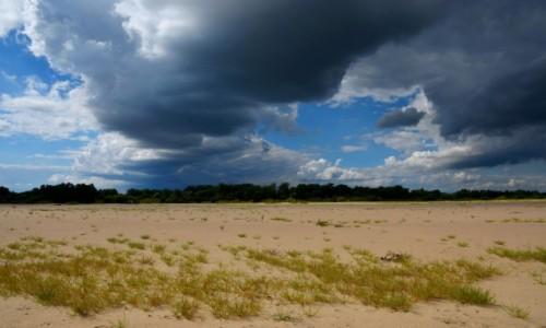 Zdjęcie POLSKA / Mazowsze / Wyspa na Wiśle w rejonie Rudy Tarnowskiej / Nadciąga burza