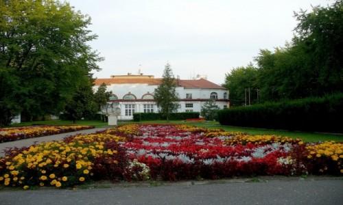 Zdjęcie POLSKA / kujawsko pomorskie / Ciechocinek / Dywany kwiatowe w dali, Europa.