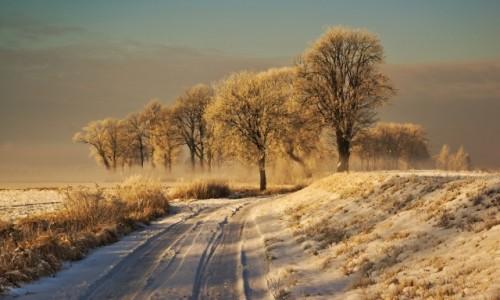 POLSKA / Warmia  / Braniewo  / zima