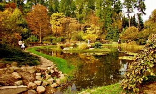 Zdjęcie POLSKA / województwo łódzkie / Rogów / Arboretum w Rogowie