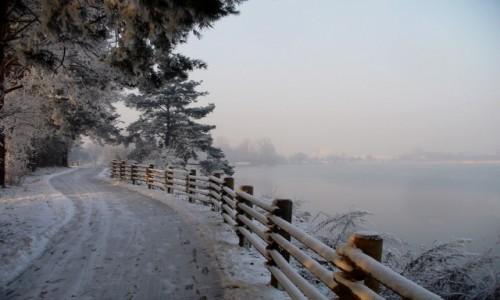 POLSKA / opolskie / Nad Odrą / Zimowa ścieżka