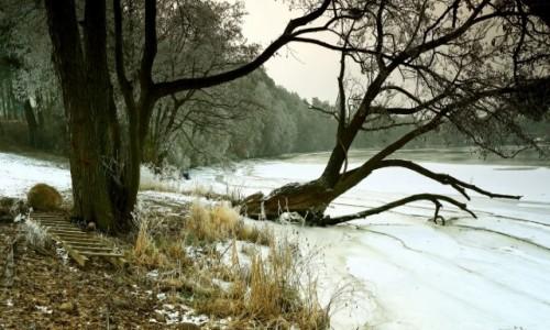 POLSKA / Bory Tucholskie / Dolina Brdy / Na południu zima,a północ bez śniegu!