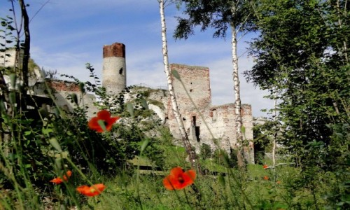 POLSKA / Jura Krakowsko-Częstochowska / Olsztyn k/Częstochowy / Ruiny zamku Olsztyn