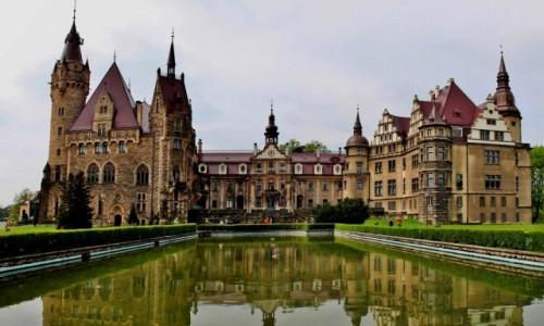 Zdjecie POLSKA / opolskie / Moszna / Pałac w Mosznej