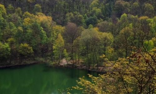 Zdjecie POLSKA / Zachodniopomorskie / Jezioro Szmaragdowe / kącik zapomnienia...