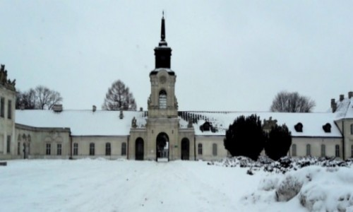 Zdjęcie POLSKA / lubelskie / Radzyń Podlaski / Pałac Potockich -dziedziniec