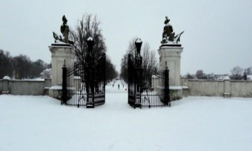 Zdjęcie POLSKA / lubelskie / Radzyń Podlaski / Brama w zimowej szacie