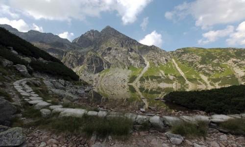 POLSKA / Tatry / Czarny Staw Gąsienicowy / Droga nad stawem